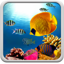 Coral Reef Live Wallpaper 18.0