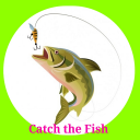 Catch the Fish 4.0aa