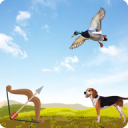 Archery bird hunter 2.5.1