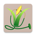 Rice Doctor 1.1.2
