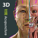 Visual Acupuncture 3D 3.1