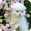 Puzzle - kittens 1.25