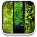 nature live wallpapers 1.1