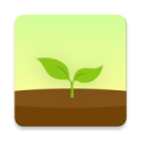 Forest 4.8.6