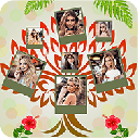 3D Tree Pic Collage Maker 1.1.3