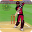 Smashing Cricket 2.9.3