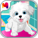 Puppy Pet Daycare 14.0