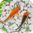 Fish Live Wallpaper 2018: Aquarium Koi Backgrounds 1.6