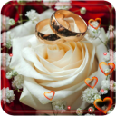 Love Roses Gift live wallpaper 1.7