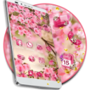 Pink Summer Flower Theme 1.1.9