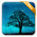 Dream Night Live Wallpaper - Pro 1.5.11
