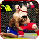 World MMA Fighting Champions: Kick Boxing PRO 2018 1.0.5