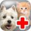 Kids Pet Vet Doctor 2.0.6