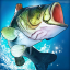 Fishing Clash: Catching Fish Game. Bass Hunting 3D 1.0.56