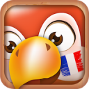 Learn French Phrases   French Translator 14.1.0