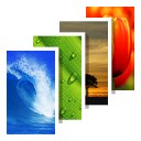 Backgrounds 4.9.360
