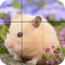 Puzzle - Cute Hamsters 1.26