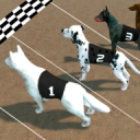 Crazy Dog Racing 2.4.0