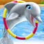 Dolphin Show 3.03.2