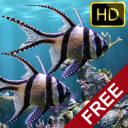 The real aquarium - HD 2.21