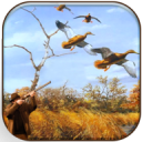 Wild Duck Hunter 3D - Real Wild Hunting Game 0.7
