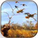 Wild Duck Hunter 3D - Real Wild Hunting Game 0.8