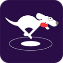 VPN Dog -Free Unlimited Privacy & Anonymous VPN 4.5.0